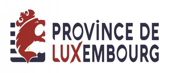 logo-provlux